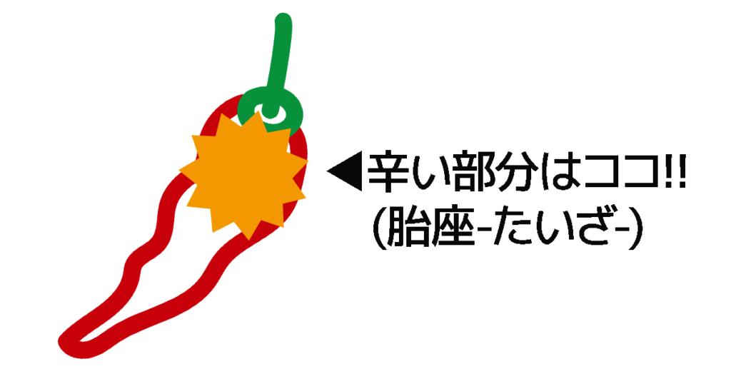 唐辛子の胎座